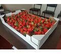 ящики лотки тара упаковка из гофрокартона - Садовый инструмент, оборудование в Красногвардейском