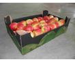 ящики лотки тара упаковка из гофрокартона, фото — «Реклама Красногвардейского»