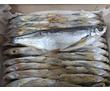 Чехонь вяленая, фото — «Реклама Севастополя»