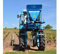 Агрофирма «Золотая Балка» приглашает: виноградарей, трактористов-машинистов! - Сельское хозяйство, агробизнес в Симферополе