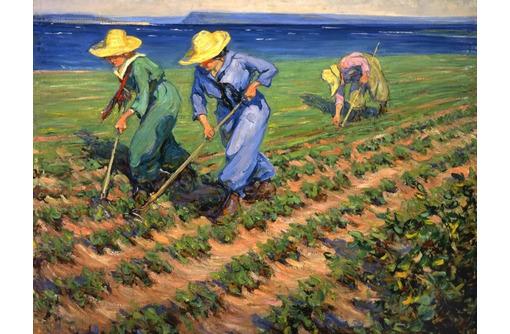 Рабочие на сбор обощей, фото — «Реклама Красногвардейского»