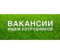 Администратор интернет-магазина - Без опыта работы в Черноморском
