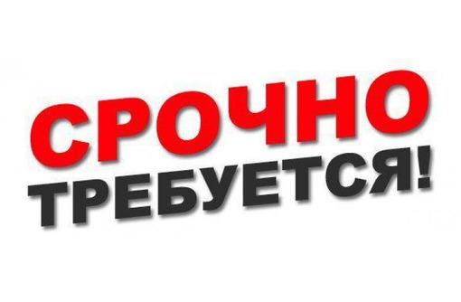 Требуется дворник. График 2/2 (Гагаринский район), фото — «Реклама Севастополя»