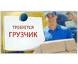 Приглашаем на работу грузчика-экспедитора, фото — «Реклама Севастополя»