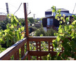 Продам участок у моря Между Орловкой и Качей, СТ Полюшко-2, фото — «Реклама Севастополя»