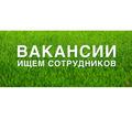 Сотрудник для обработки электронной корреспонденции (удаленная работа) - Секретариат, делопроизводство, АХО в Крыму
