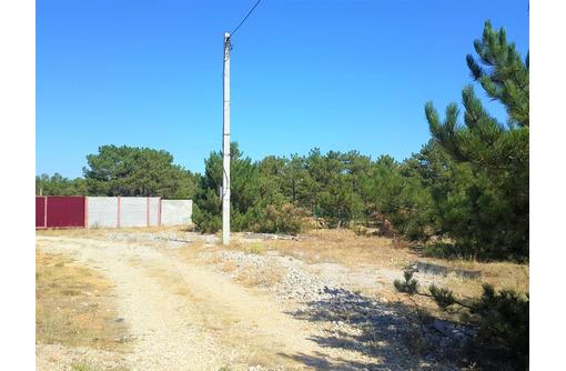 Продам шикарный участок 6 соток в окружении соснового леса на Фиоленте. 1,4млн.р., фото — «Реклама Севастополя»