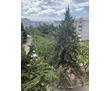 Продается трехкомнатная чешка на ул.Хрусталева, фото — «Реклама Севастополя»