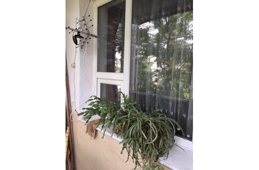 квартира в Инкермане с окнами в парк., фото — «Реклама Севастополя»