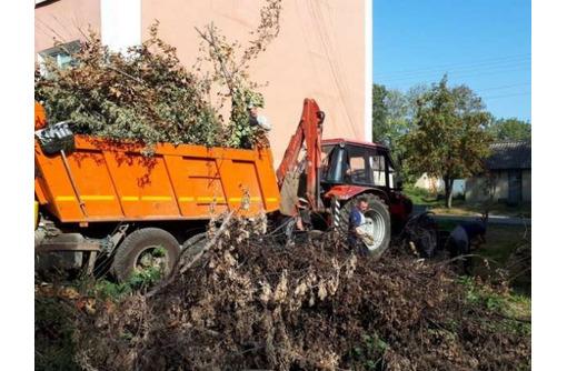 Вывоз мусора с дачи вывоз строительного мусора, фото — «Реклама Севастополя»