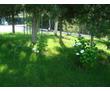 Спил деревьев и кустов, фото — «Реклама Севастополя»