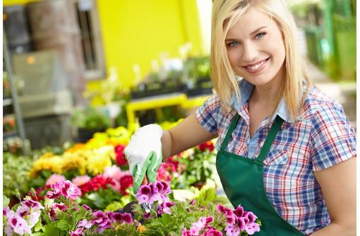 Требуется садовник (частичная занятость), фото — «Реклама Севастополя»