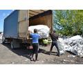 Вывоз мусора, демонтаж, услуги грузчиков, продажа дров в Севастополе – низкие цены! - Грузовые перевозки в Севастополе