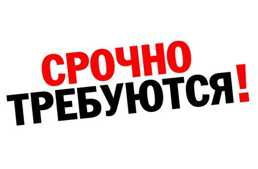 Вакансии в Новус по адресу Ген. Острякова 192Б, фото — «Реклама Севастополя»