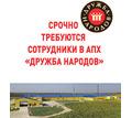 Срочно требуются сотрудники в АПХ «Дружба народов» - Сельское хозяйство, агробизнес в Армянске
