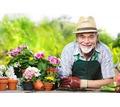 Садовник - уборщик территории требуется на круглогодичную работу в частную гостиницу - Сельское хозяйство, агробизнес в Судаке