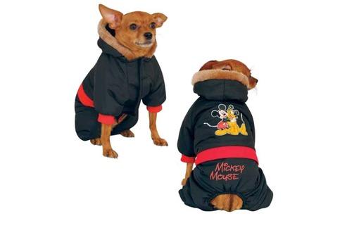 комбинезон для собаки зимний Mickey с капюшоном, фото — «Реклама Севастополя»