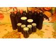 Сироп МАРЬЯНА из плодов черной бузины, фото — «Реклама Белогорска»