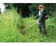 Покос травы быстро и качественно, фото — «Реклама Севастополя»