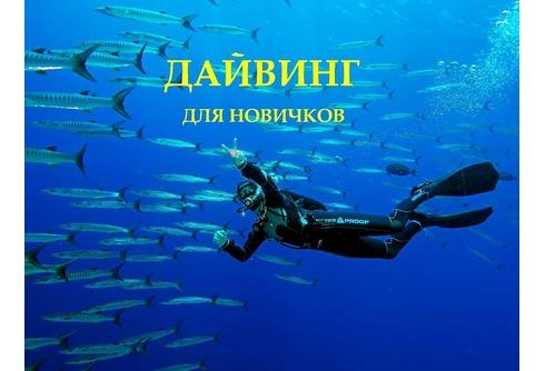 Дайвинг в Севастополе и Балаклаве (для новичков)