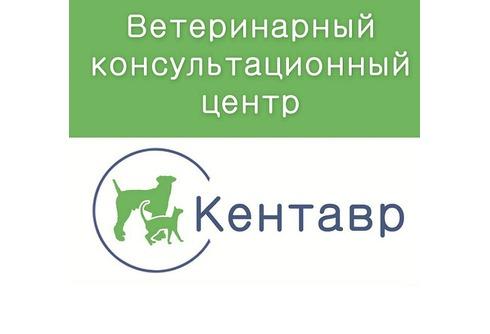 Кентавр, ветеринарная клиника