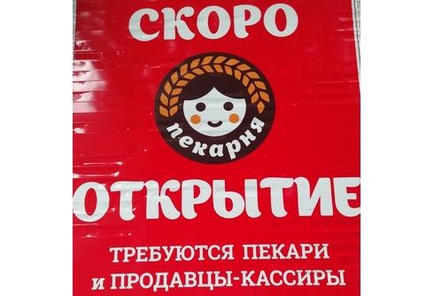 ИП Ширяев