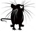 Дератизация. Уничтожение крыс быстро и качественно - Клининговые услуги в Кубани