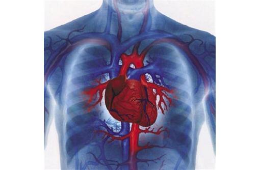Лечение сердца,снижение давления точечно-биоэнергетическим массажем, фото — «Реклама Анапы»