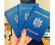 Перевод документов с молдавского языка, фото — «Реклама Краснодара»