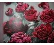 Ремонтно-отделочные работы (штукатурка, шпаклевка, обои и т.д.), фото — «Реклама Краснодара»