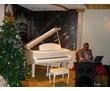 Певец-музыкант на свадьбу, юбилей, фото — «Реклама Геленджика»