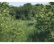 Продается земельный участок, фото — «Реклама Лабинска»