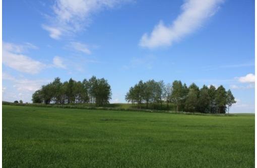 Земельный участок с/х назначения 885 Га., фото — «Реклама Приморско-Ахтарска»