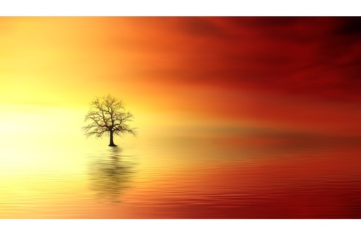 приворот и ясновидение Краснодар, фото — «Реклама Краснодара»