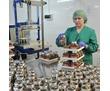Упаковщики на фабрику кофе, фото — «Реклама Анапы»