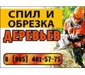 Спил и обрезка деревьев - Охрана, безопасность в Кубани