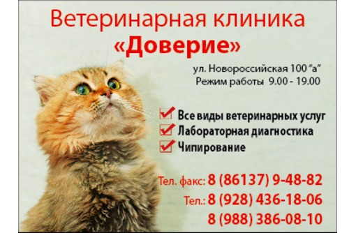 """Ветеринарная клиника """"Доверие"""", фото — «Реклама Армавира»"""