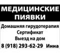 Медицинские пиявки - Нетрадиционная медицина в Армавире