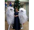 Ведущая радостных событий - Свадьбы, торжества в Белореченске