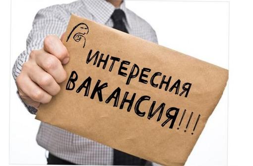 Региональный торговый представитель, фото — «Реклама Славянска-на-Кубани»