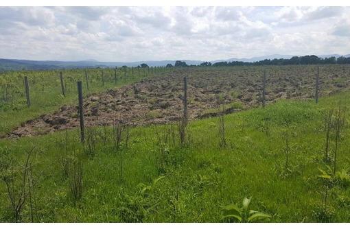 Продам земельный участок под ИЖС, фото — «Реклама Хадыженска»