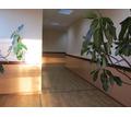 Сдаются в аренду офисные помещения - Сдам в Сочи