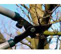 Обрезка садовых деревьев кустарников - Клининговые услуги в Сочи