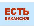 Специалист по рекламе в интернет магазин, фото — «Реклама Гулькевичей»