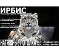 Натяжные потолки:Краснодарский край - Натяжные потолки в Новокубанске