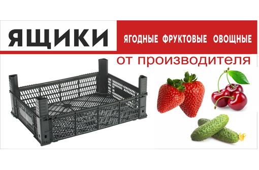 ящик пластиковый (полимерный), фото — «Реклама Белореченска»