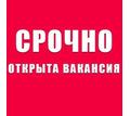 Специалист с опытом работы с клиентами - Без опыта работы в Кубани