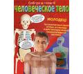 Модель человека, Обучающий набор Артёмка (Собери человеческое тело) - Игрушки в Краснодаре