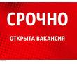 Маркетолог в интернет магазин, фото — «Реклама Гулькевичей»