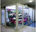 Холодильная камера для цветов со стекло-пакетом - Продажа в Кубани